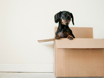 Moving House? Here's How to do it The Right Way (Checklist Included)